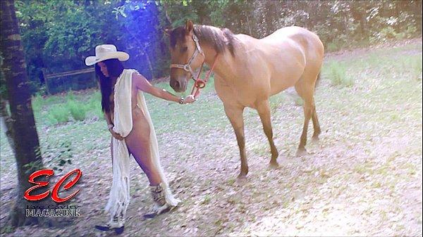 Gefickt vom porno pferd Gesellschaftlich akzeptierte